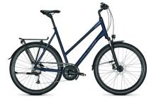 Trekkingbike Raleigh RUSHHOUR 4.0 XXL