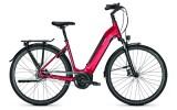 e-Citybike Raleigh BRISTOL 8