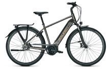 e-Citybike Raleigh BRISTOL PREMIUM