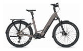 e-Mountainbike Kalkhoff ENTICE 7.B ADVANCE+