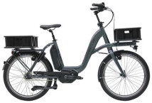 E-Bike Hercules ROB CARGO R7