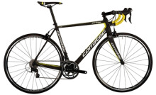 Rennrad Corratec CCT Team 105
