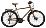 Trekkingbike Corratec C29er Trekking Two Gent
