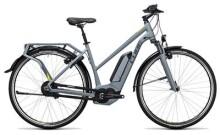 E-Bike Cube Delhi Hybrid 400 grey´n´lime