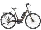 E-Bike Diamant Zagora+ T