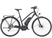 E-Bike Diamant Elan+ G