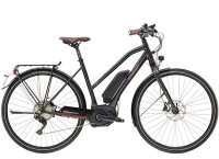 E-Bike Diamant 825+ G