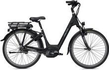 "E-Bike Falter E 9.5 RT 26"""