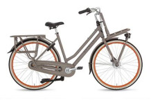 Citybike Gazelle Heavyduty.NL  T3