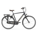 Citybike Gazelle Ultimate C8  H8