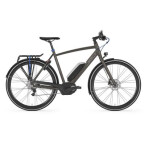 E-Bike Gazelle Cityzen C8 HMB  S8