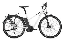 E-Bike Raleigh ASHFORD S10