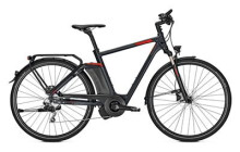 E-Bike Raleigh ASHFORD