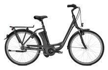 E-Bike Raleigh DOVER IMPULSE 7