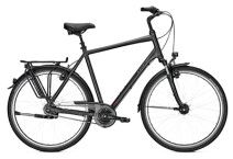 Citybike Raleigh UNICO XXL