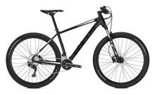Mountainbike Focus Black Forest Lite 27
