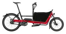 E-Bike Riese und Müller Packster 40 city
