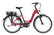 E-Bike Riese und Müller Swing city