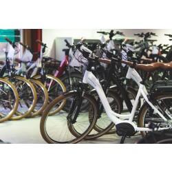 Fahrrad Wollesen GmbH & Co. KG Innenansicht 1