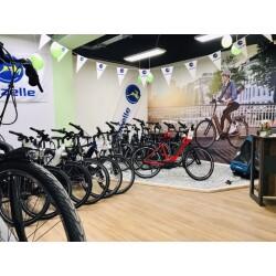 E-Bike Erlebnis Center Nr.1 Innenansicht 1