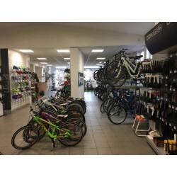 Bikeshop Ansorge GmbH Innenansicht 2