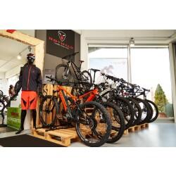 Zweiradparadies DENK GmbH & Co. KG Innenansicht 2