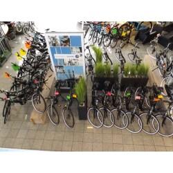 Fahrradcenter Zimmermann Innenansicht 2
