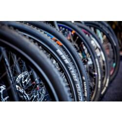 Fahrrad Blaschke Innenansicht 2