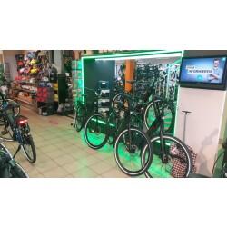 Rad & Tour Innenansicht 3