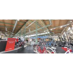 Fahrrad XXL Chemnitz Innenansicht 3