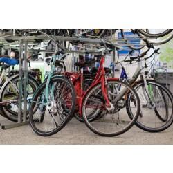 Der Fahrradspezialist Viezens Innenansicht 3