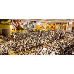 Fahrrad XXL Emporon Geschäftsbild 1