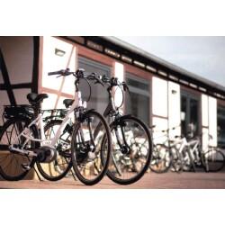 Radscheune, Fahrradhandlung Gebr. Riebold Geschäftsbild 2