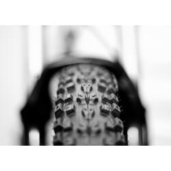 Zweiradcenter Mensinger Geschäftsbild 2