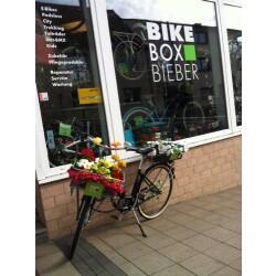 Bike Box Bieber Geschäftsbild 3