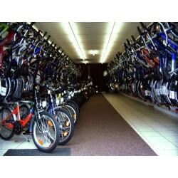 Fahrradhaus Jacoby Geschäftsbild 4