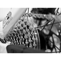 Zweiradcenter Mensinger Geschäftsbild 4