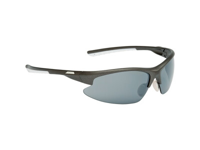 Alpina Brille Dribs 2.0