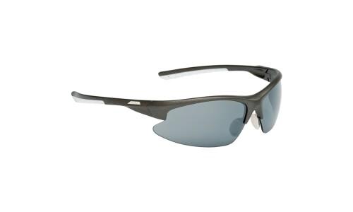 Alpina Brille Dribs 2.0
