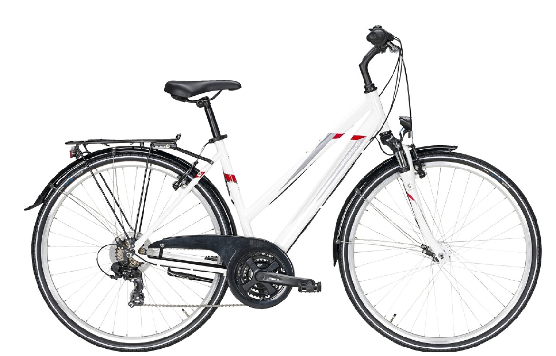 "Pegasus Avanti "" Modell 2021 """