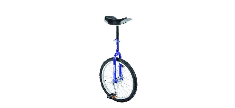 Fishbone Einrad-Sport 20