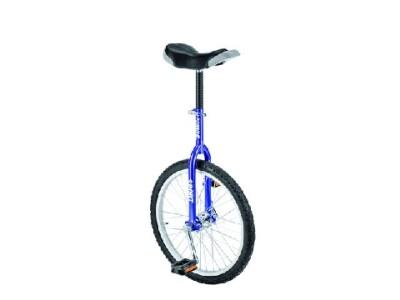 """Fishbone Einrad-Sport 20"""""""
