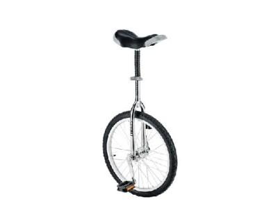 Fishbone Einrad-Sport 16