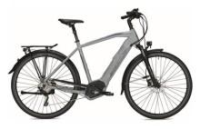 E-Bike Morrison E 8.0