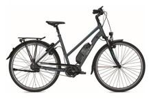E-Bike Falter E 8.8