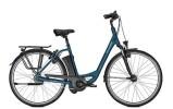E-Bike Raleigh DOVER 8 HS