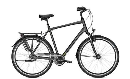 Raleigh UNICO XXL, belastbar bis 170 kg Gesamtgewicht, 8-Gang-Shimano Schaltung. Herrenrad.