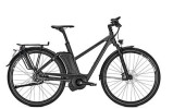 E-Bike Raleigh ASHFORD S11