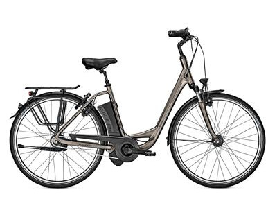 Raleigh Dover Impulse 8 HS grey matt