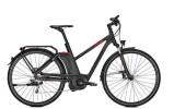 E-Bike Raleigh ASHFORD